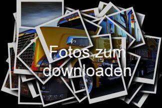 Fotos zum downloaden
